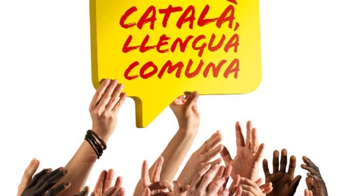 Aquest estiu, connecta't al català