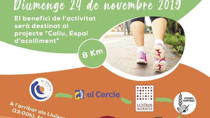 La DT de Barcelona organitza la sortida 'Camins d'Ateneus'. T'hi apuntes?
