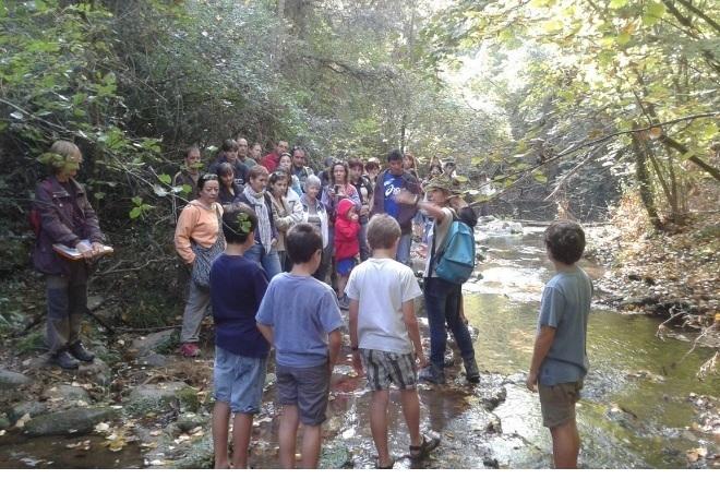 4 nov, Ateneu Vall de Llémena: esmorzar-tertúlia verda