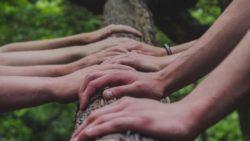 Oberta la convocatòria per a la 28a edició del Premi Voluntariat